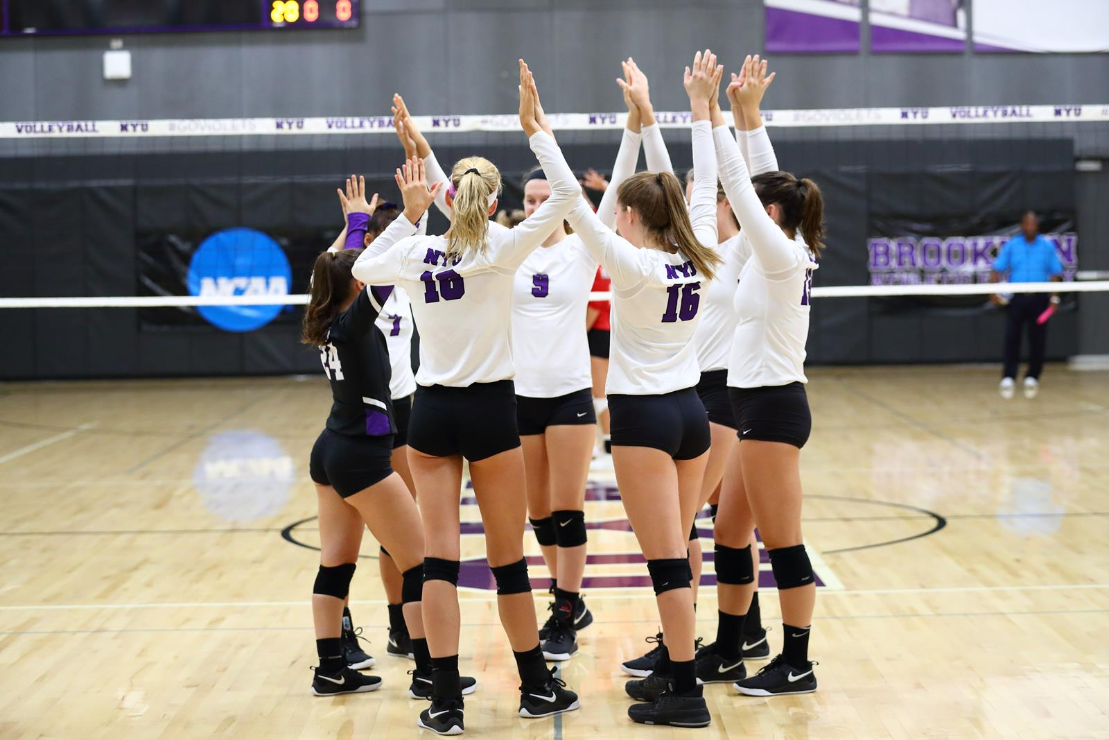 Women S Volleyball Announces 2024 Recruiting Class Nyu Athletics